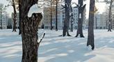 Новостройка: ЖК Аристье, Московская область - ID 24197