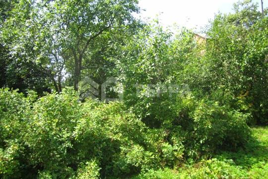 Участок, 16 соток, деревня Солослово  , Рублево-Успенское шоссе