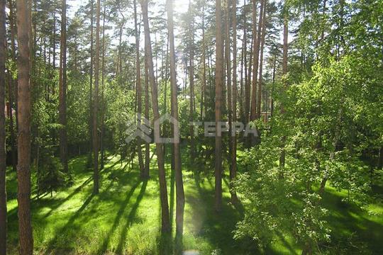 Участок, 66 соток, деревня Архангельское  , Ильинское шоссе