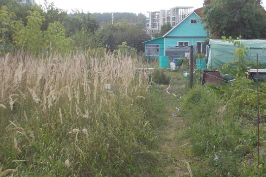 Участок, 8 соток, деревня Бузланово Центральная улица, Ильинское шоссе