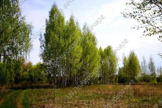Участок, 6 соток, деревня Логиново  , Носовихинское шоссе
