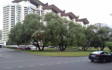 3-комн квартира, 117.3 м2, 5 этаж