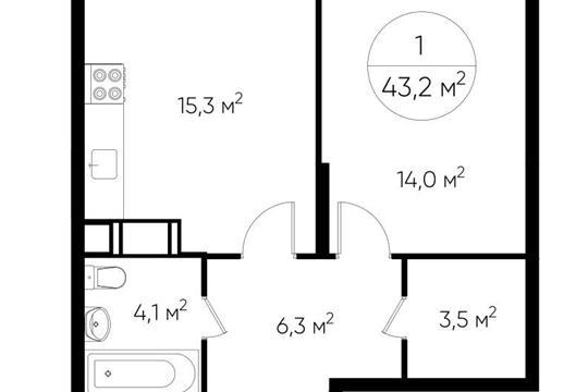 1-комн квартира, 43.3 м2, 1 этаж